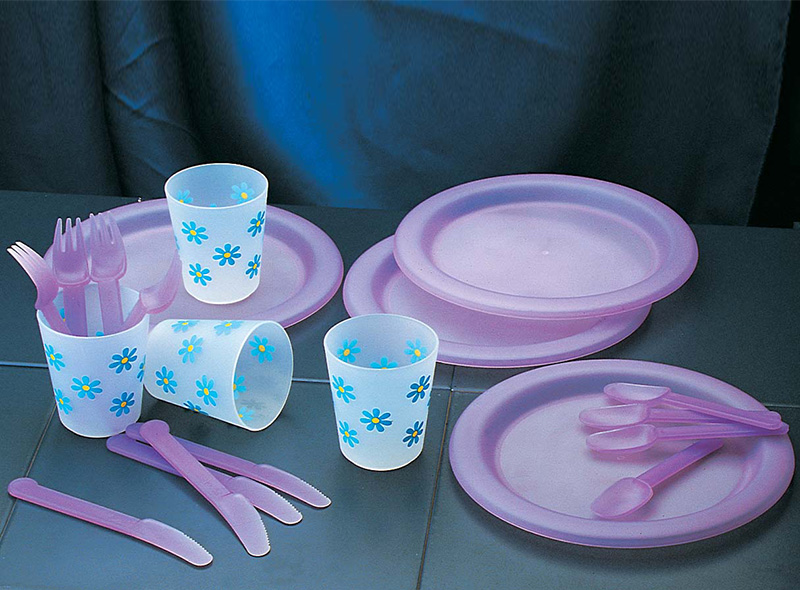 20PCS PICNIC SETS WITH CUPS