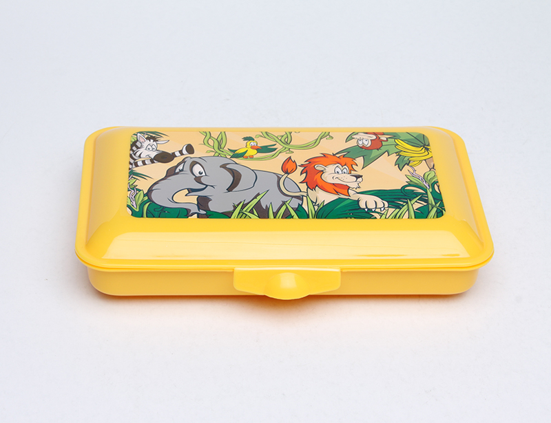 KIDS PLASTIC RECTANGLE LUNCH BOX
